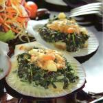 Scallops with Spinach and French Sauce