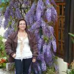 Foto de Hotel Sul Serra