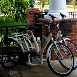 Loaner Bikes for Guests