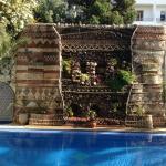 mur végétal au bord de la piscine