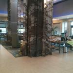 Foto de Hilton Garden Inn College Station