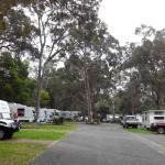 Powered Caravan Sites
