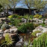 the patio overlooking the lily pond with flowing water