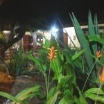 Jardim da área interna da pousada