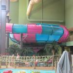 Bowl slide