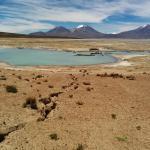 Surire Salzsee nahe der heißen Quelle