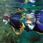 Excursiones snorkel / Snorkeling trips