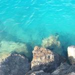 This was the color of the ocean in the summer and it was to die for!☀️��