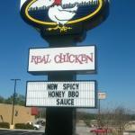 Chicken, chicken, chicken!