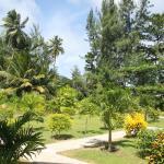 Photo de Chalets d'Anse Reunion