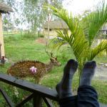 Foto di Bardia Kingfisher Resort