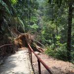 Blocked pathway