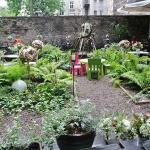 Magiczny ogród