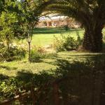 Vista de la habitación a los jardines