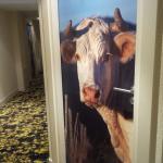 le couloir.....