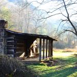 Charit Creek Lodge Cabins