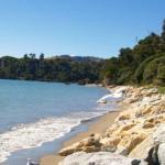 Beach at Pohara Top 10 Holiday Park