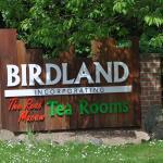 Tropical Birdland