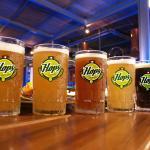 Ven y disfruta de nuestras deliciosas Cervezas Naturales!!!