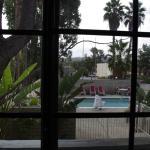 Murphy Bed Room view