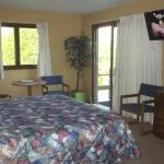 Allyndale Motel  King Room