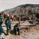 Mongolian pony men take pilgrims to the peak