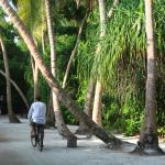 Bicycling at Soneva Fushi