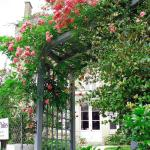 The Beautiful Flower Arch with Roses, Honeysuckle and White Wisteria from the Drive to the Garde