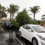Foto de Tropicana Motor Inn