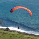 Paragliders take off from Lennox Point