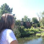 Comtemplando a natureza