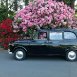 Victoria's London Taxi Day Tours