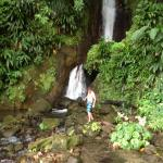 Waterfall in Papillote garden