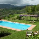 la piscina (mt 13x6) posta al centro del parco e circondata dai prati, dai gerani e dai glicini