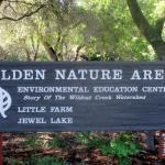 Tilden Park Little Park, Berkeley, Ca