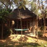 Foto de Shanthi Guesthouse