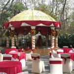 Wedding Location - Lawn