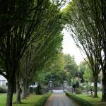 Main walk