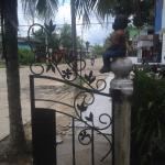 Foto de La Jangada Hostel