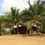 Foto de Hideout Lodge