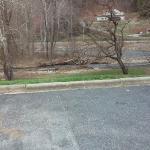 the creek that runs behind the motel