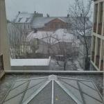Sne i Moss