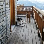 In the area of the Col du Petit St Bernard what more natural than the eponymous dog and her frie