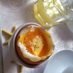 Yummy eggs