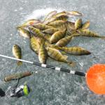 March Perch Fishing on Area Lake