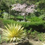 Garden Area - Garin/Dry Creek Pioneer Regional Parks, Hayward/Fremont, Ca