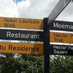 Desmond Tutu street, Soweto