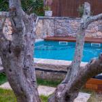 garden&swimming pool