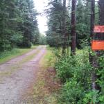 TRAIL ACCESS TO RIDE THE WILDS!