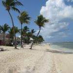 Beach View - Old Bahama Bay Resort